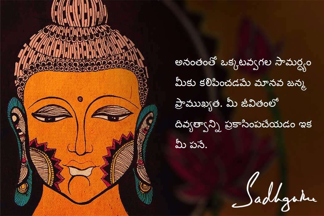 Quotes On Buddha