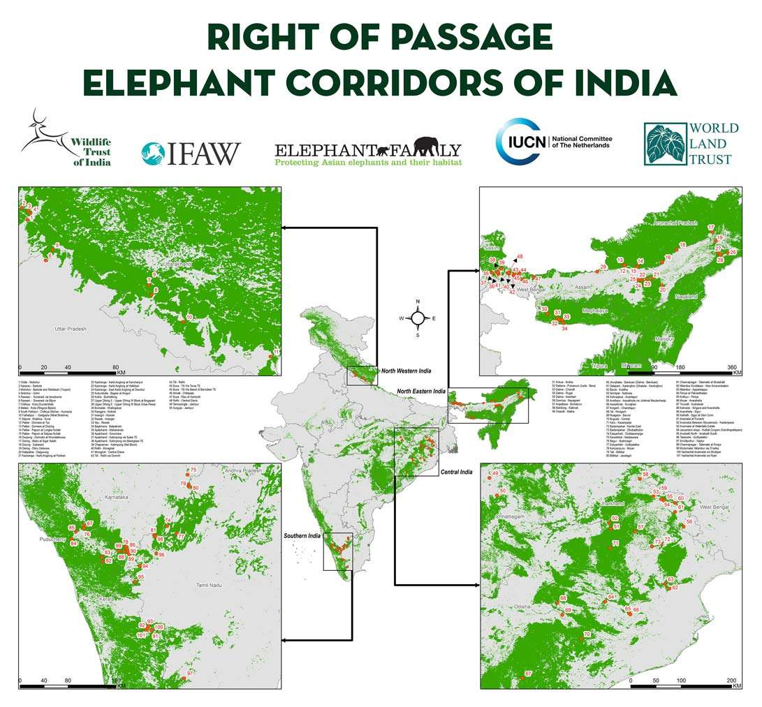 Map showing the location of all elephant corridors proposed by WTI in India