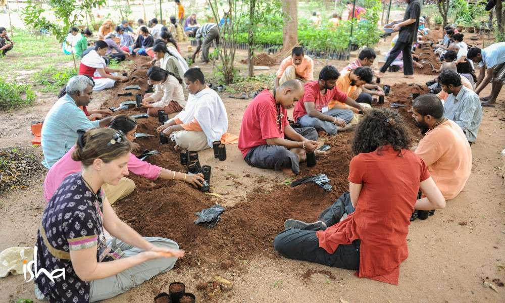 a-movement-that-started-with-a-seed-pgh-volunteers-making-sapling-bags