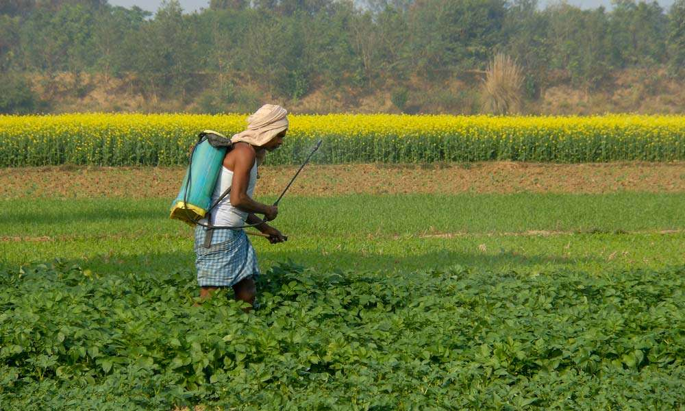 Farmer spraying fertilizer | Saving India's Farmers by Saving India's Soils