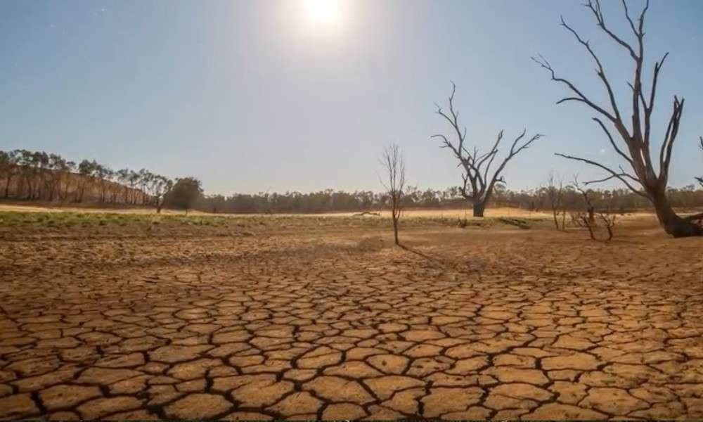 free-india-of-water-crisis-article-2-river-depletion-since-independence-dryland