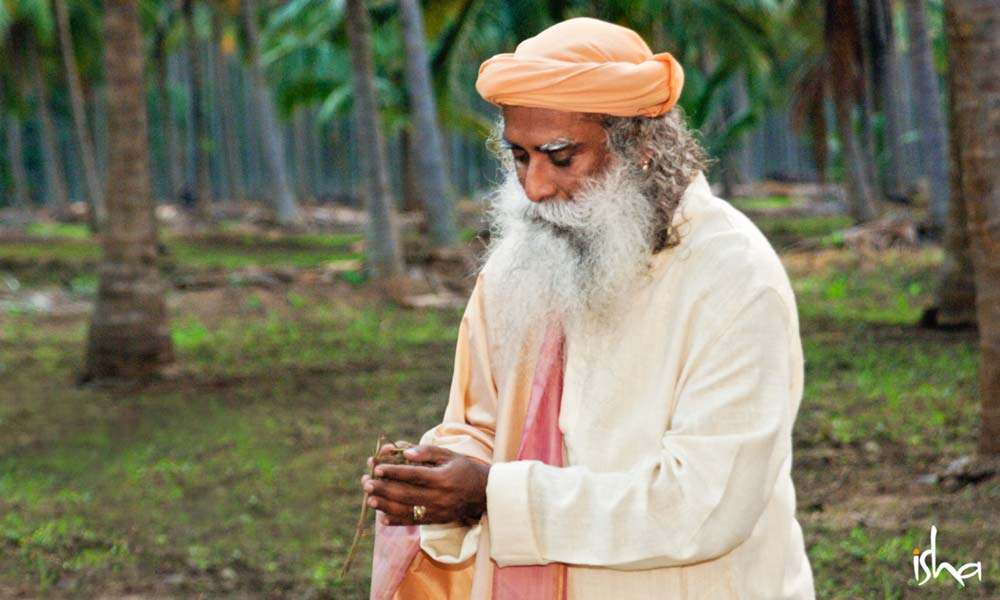 Sadhguru holding soil in his hands