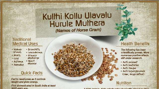 The Benefits of Horse Gram