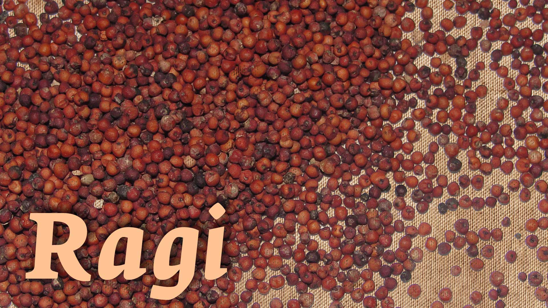 7 Health Benefits of Ragi & 6 Great Ragi Recipes
