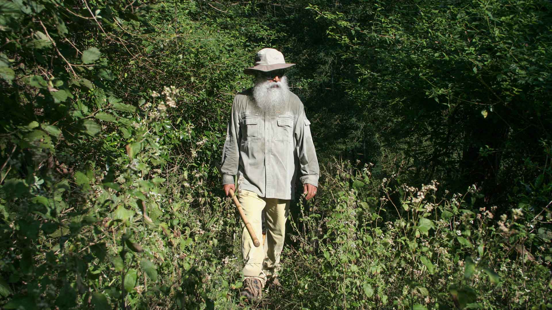 23 Days in the Jungle: When Sadhguru Trekked From Nagarhole