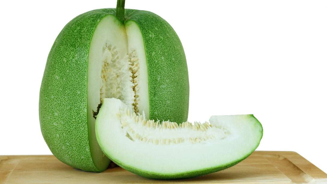 "Ash Gourd (Winter Melon), the ""Cool"" Vegetable: Benefits"