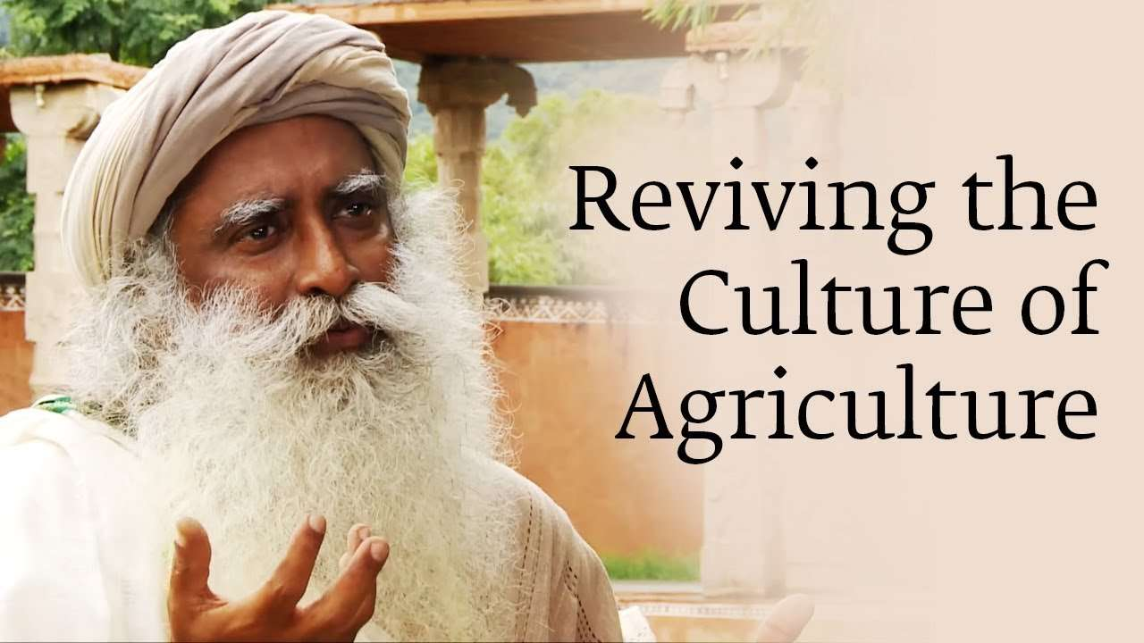 Reviving The Culture Of Agriculture