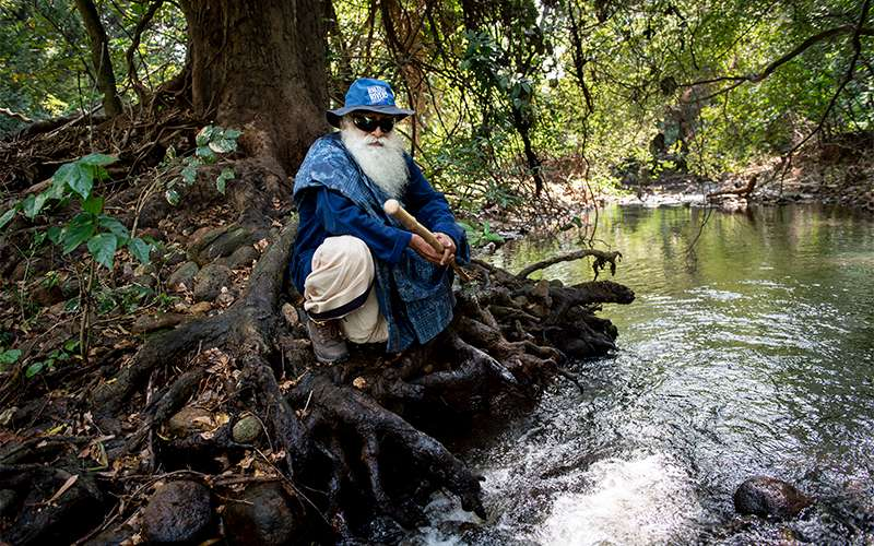 Quotes Rain - Sadhguru discusses how the current dearth of vegetation and greencover in India came to be, how it is affecting our rivers, and what must be done to reverse the crisis.