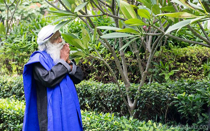 Quotes Inspirational - What is a blessing and why do we seek them? Sadhguru explains.