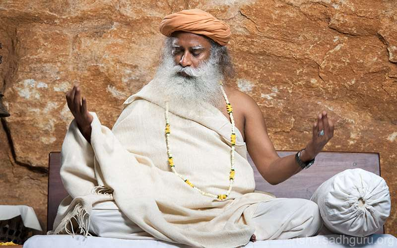 Quotes Inspirational - The source of creation is active in every creature on the planet, Sadhguru says, but in human beings, there is a possibility present in no other creature.