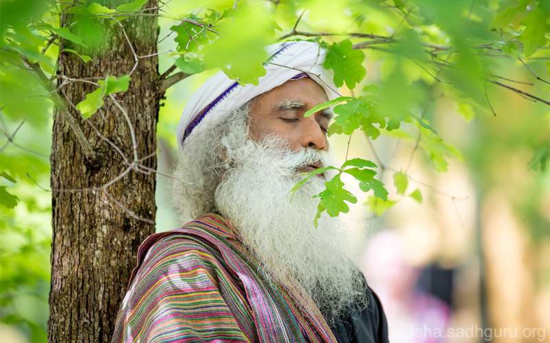 Quotes Inspirational - Sadhguru describes what the word 'yoga' means and does not mean.