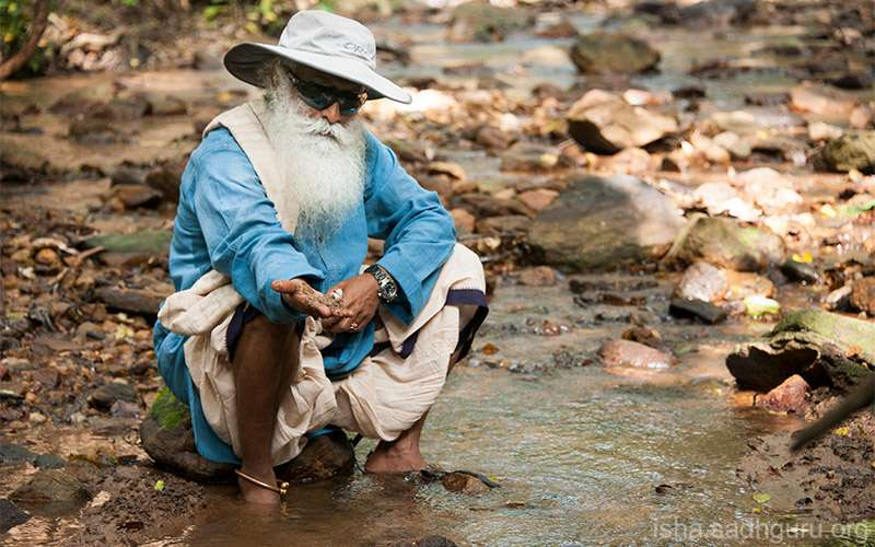 Quotes Inspirational - Sadhguru names the key areas that we need to tackle in the coming years if we want to keep this planet livable for future generations.