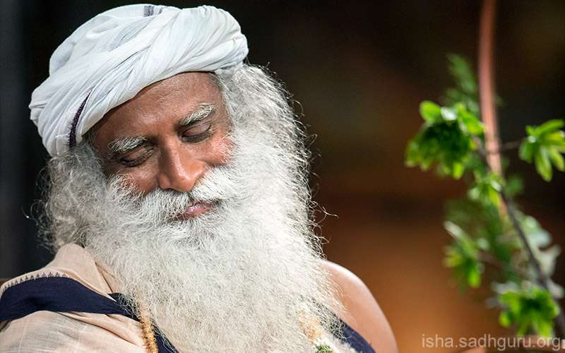 Quotes about Life - Sadhguru describes the nature of bliss as a well which originates from within.