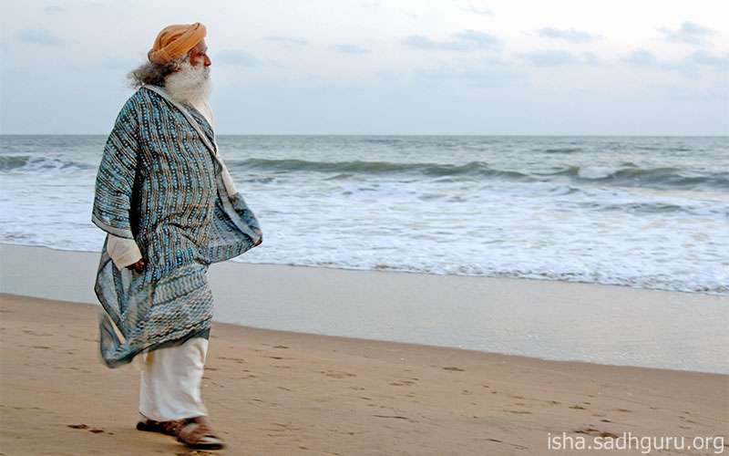 Quotes about Life -  Sadhguru speaks about how acceptance facilitates a free flow of life.