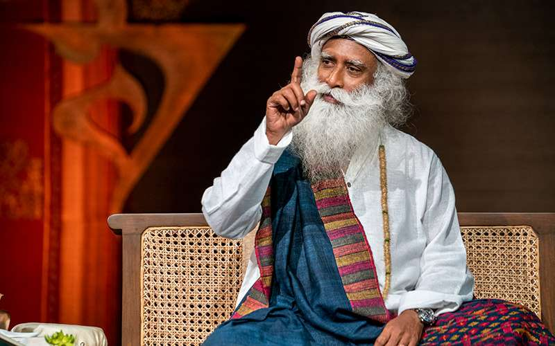 quotes deep - sadhguru looks at how most people are successful by accident