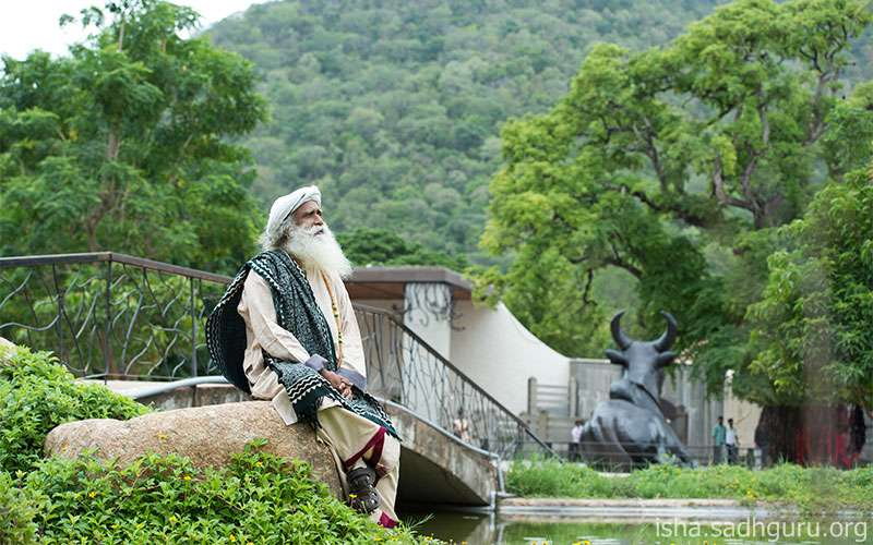 Quotes about life - Sadhguru speaks on the quality of peace and explains the true meaning of being peaceful.