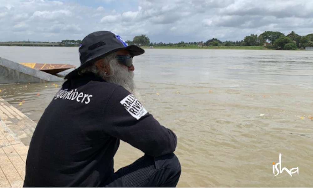 sadhguru wisdom article   Agroforestry Is Key to Solving India's Water Scarcity