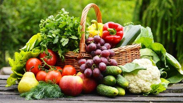 Why Vegetarian?Vegetarian food is far better for the system than non-vegetarian