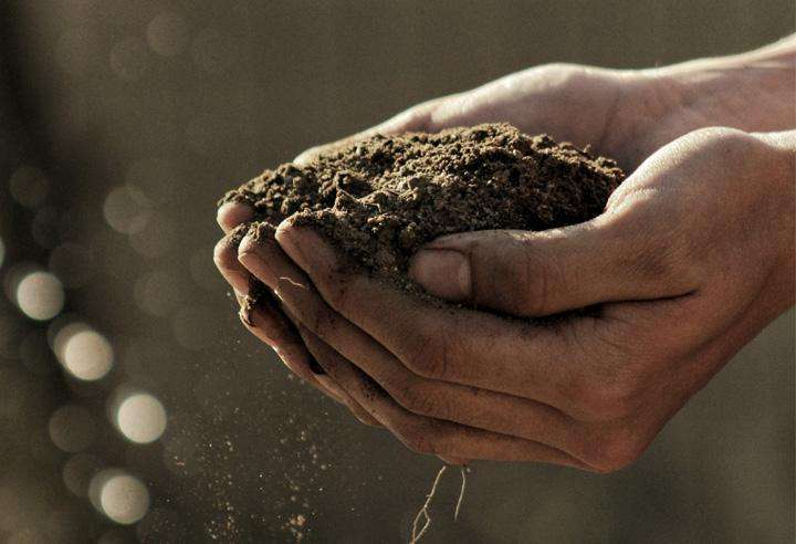replenish soil