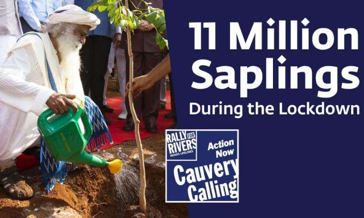 Isha Blog Video | Cauvery Calling: First Year Update from the Ground
