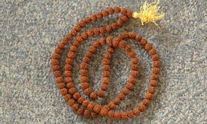 Rudraksha - Everything You Need to Know About Rudraksha