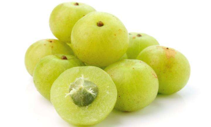 benefits-amla-indian-gooseberry-fasting