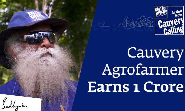 Inspiring Story of Agroforestry Farmer Earning 1 Crore