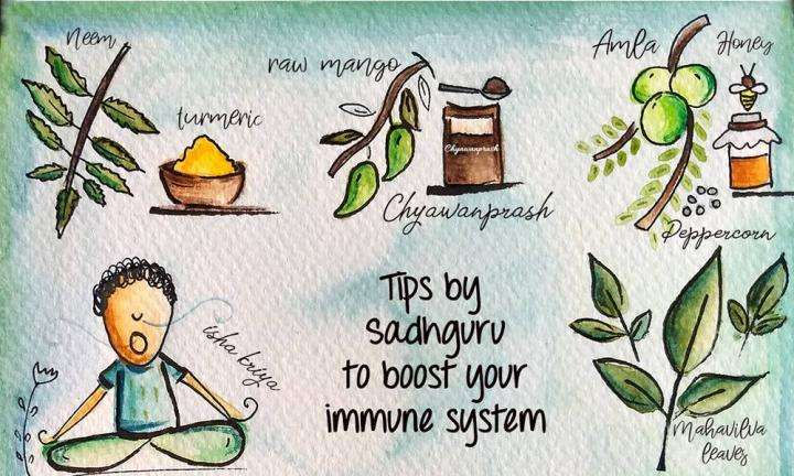 Coronavirus - 17 Tips on how to Boost Immunity Naturally