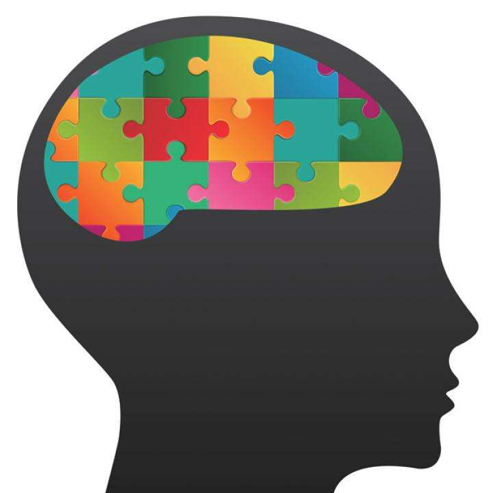Mind Jigsaw puzzle - the logical mind