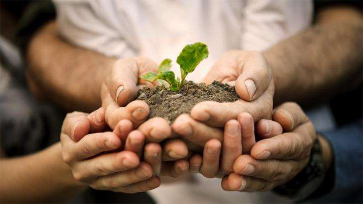 Farmers hands holding a sapling - Why You Should Help a Farmer by Planting Trees