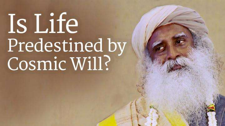 Is Life Predestined by Cosmic Will?