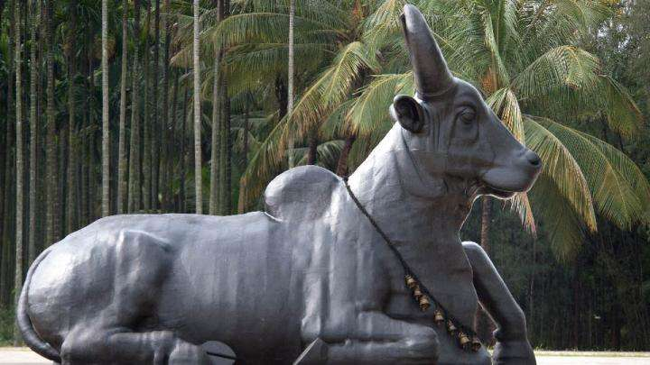 What Makes Nandi A Meditative Bull?