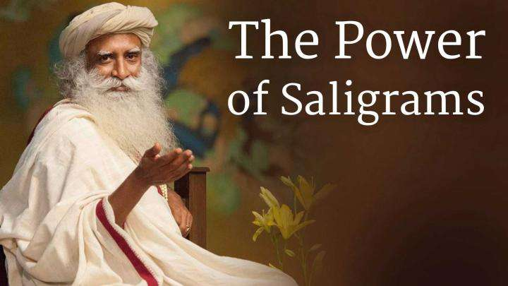 The Power of Saligrams