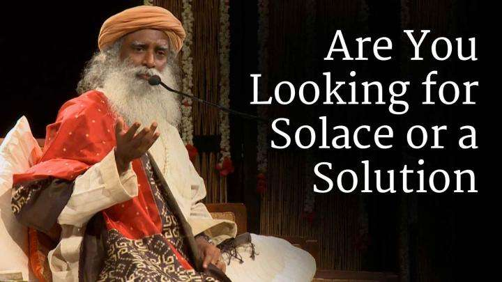 Are You Looking for Solace or a Solution?