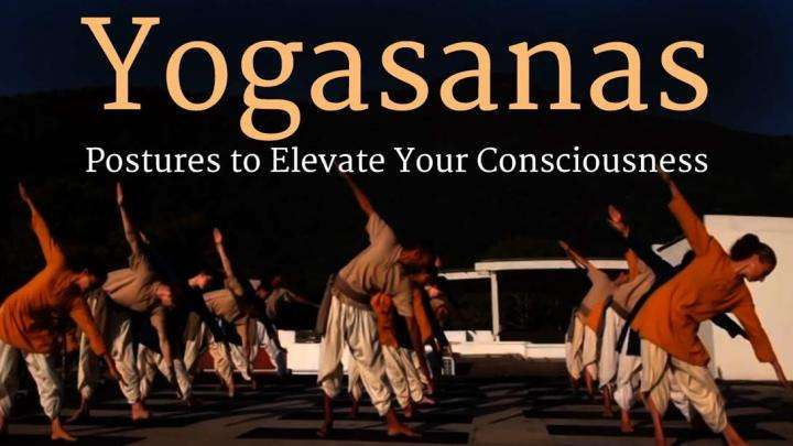 Yogasanas – Postures to Elevate Your Consciousness