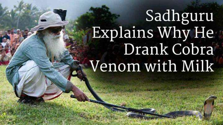 Sadhguru Explains Why He Drank Cobra Venom with Milk