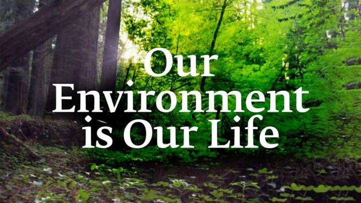 Our Environment is Our Life
