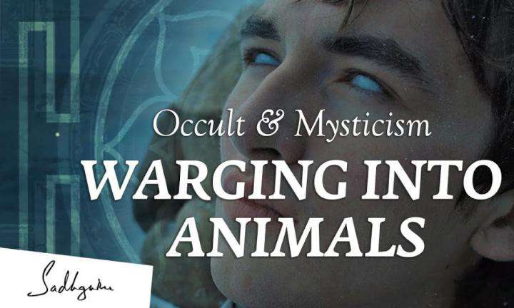 sadhguru wisdom video   occult and mysticism ep 2 : can you really warg into animals and control them