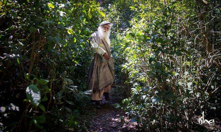 Sadhguru in the middle of a thicket | Vanaprastha: Becoming Conscious of Your Mortality
