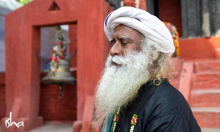 Sadhguru Wisdom Article | From Stagnation to Stillness
