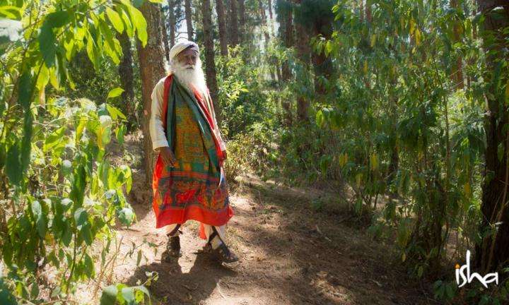 Sadhguru Wisdom Article | How Sadhguru Spends His Free Time