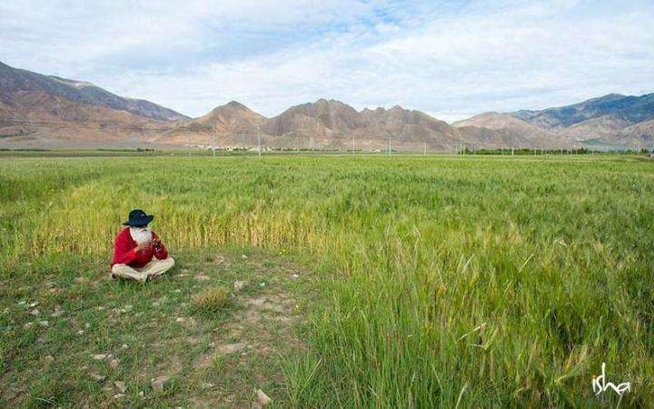 Sadhguru sitting in a field   Soil is the Real Wealth of the Nation