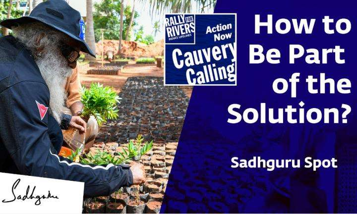 wisdom sadhguru spot | Cauvery Calling: How to Be Part of the Solution?