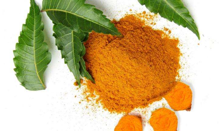 Sadhguru Wisdom Article | 9 Remarkable Neem and Turmeric Benefits