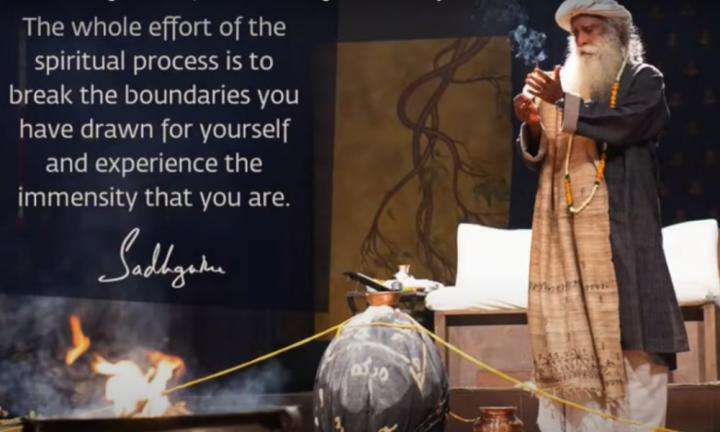 Sadhguru Wisdom Video |You Are Not Looking For More, You Are Looking For All