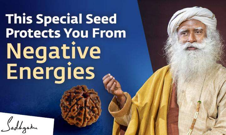 Sadhguru Wisdom Video | This Special Seed Protects You From Negative Energies